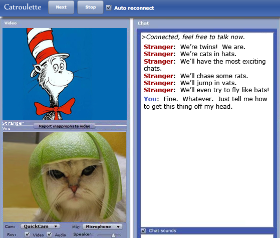The Cat in the Hat meets Limecat in Catroulette / Chatroulette