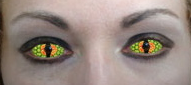 novelty contact lenses