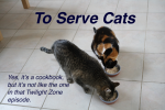 """Book cover for """"To Serve Cats: Yes, It's a Cookbook, But It's Not Like the One In That Twilight Zone Episode"""