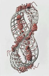 Moebius Strip II by M.C. Escher